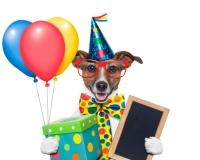 fødselsdagbillede-18
