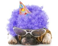 fødselsdagbillede-30