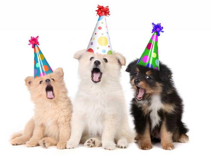 Sjove fødselsdagskort til mænd